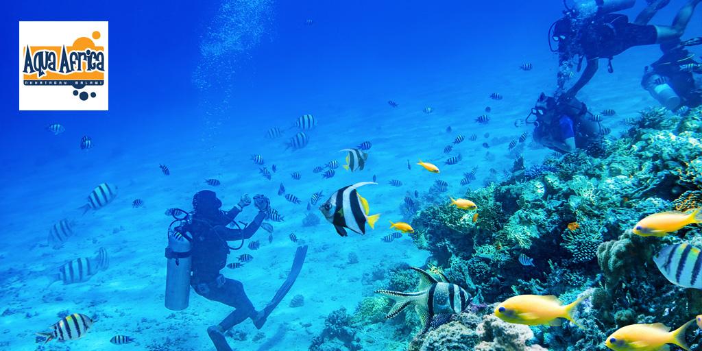 scuba diving nkhata bay